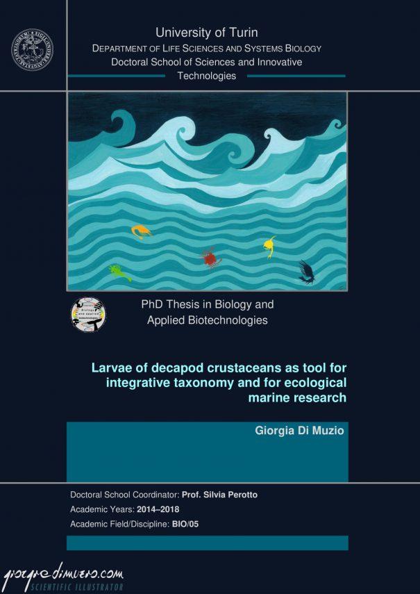 portfolio_thesis-covers_crustacean_larvae_scientific_illustration_giorgiadimuzio_01