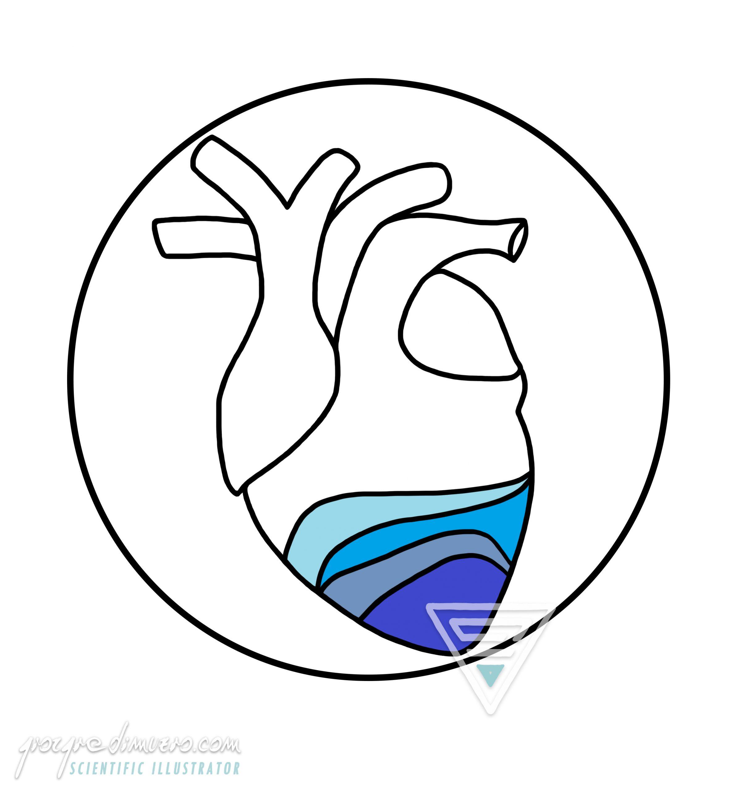 gallery_oceano_corpo_ocean_heart_logo_scientific_illustration_giorgiadimuzio